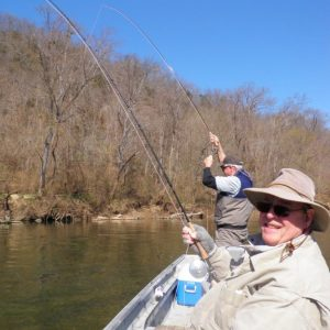 Gene fishing